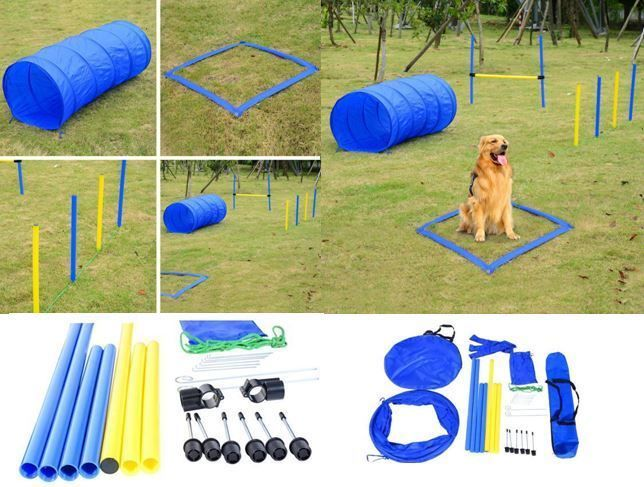 Pet Agility Training Set Blue Yellow Dogs Obstacle Course Tunnel Poles Crossbar Unbranded Agility Training Dog Exercise Pets
