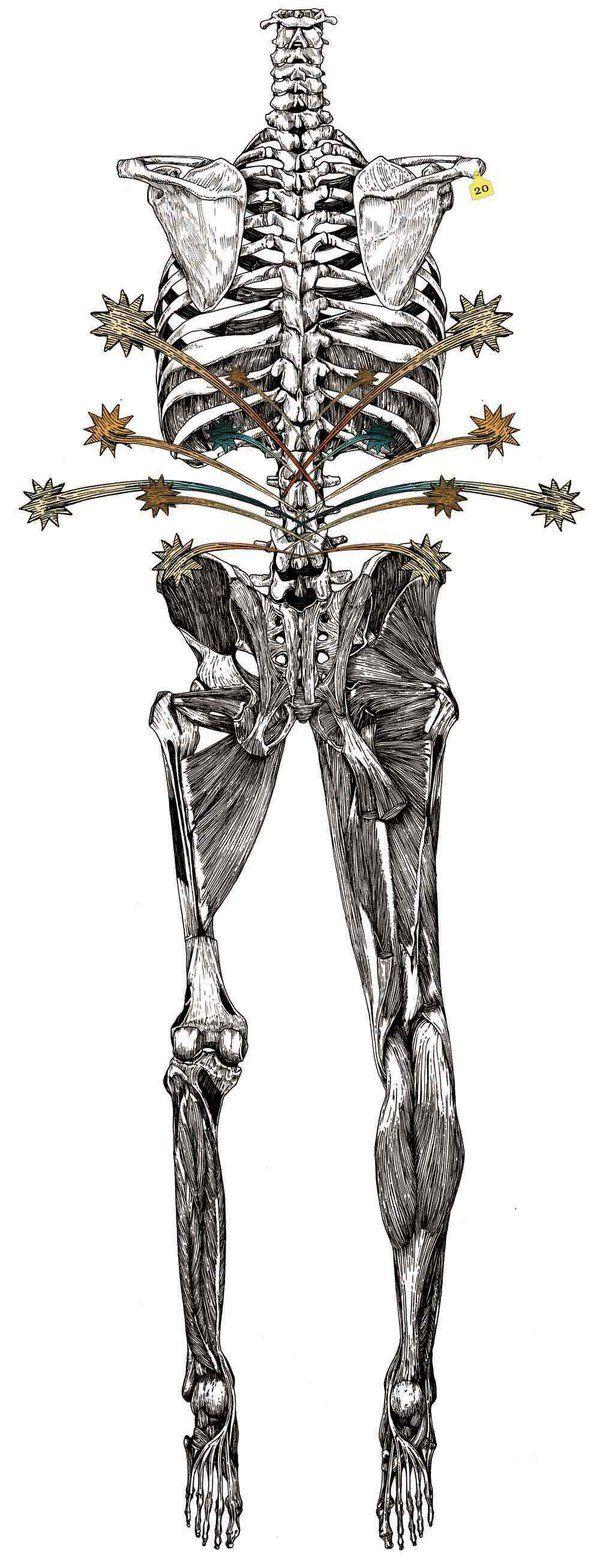 """Body"" illustrations 2 by Wataru Yoshida, via Behance"