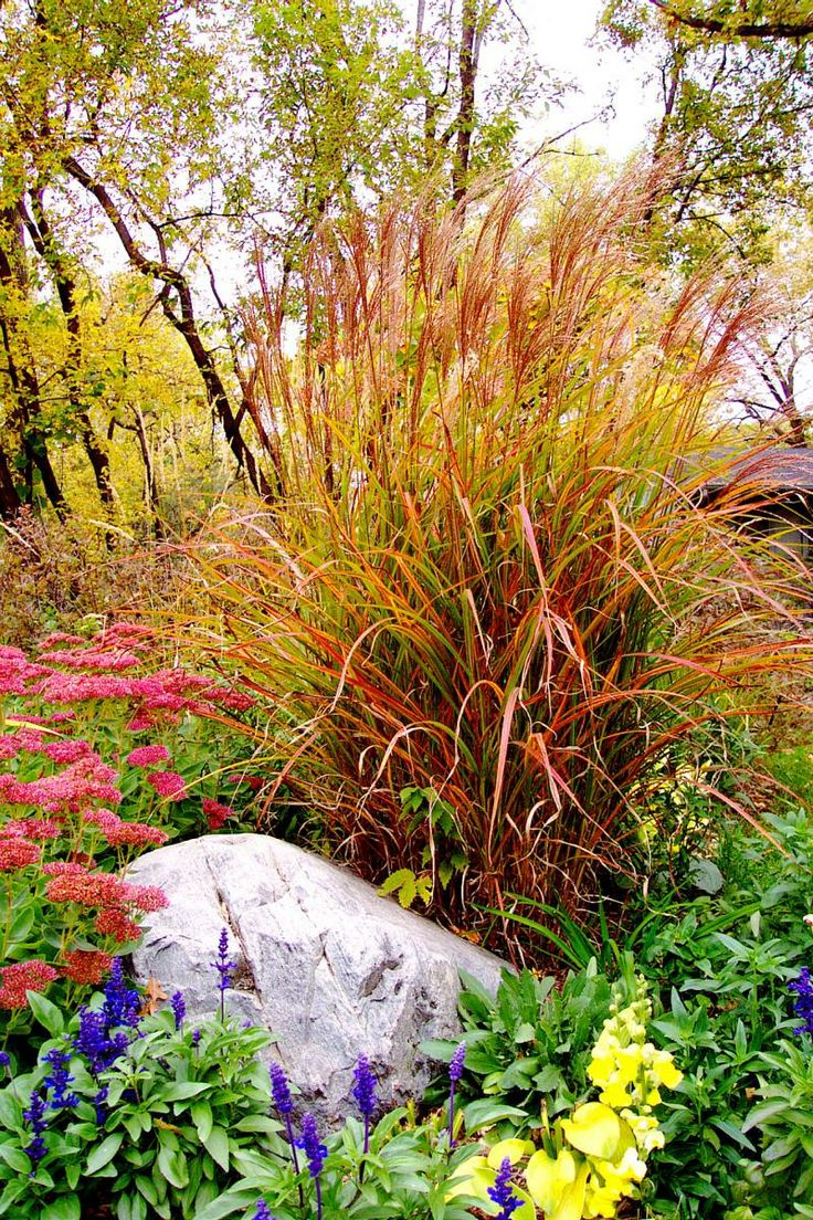 23 best landscaping ideas images on pinterest landscaping ideas