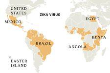 U.S. Becomes More Vulnerable to Tropical Diseases Like Zika