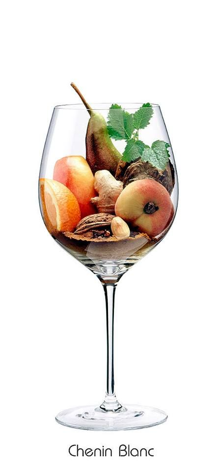 CHENIN BLANC: Bitter-Orange, Walnuss, Apfel, Aprikose, Birne, Zitronenmelisse, Ingwer, Zimt, Curry, Gewürznelke, getrocknete Austernschale