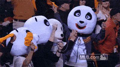 Endangered Species Panda Information Funny Gif #5921 - Funny Panda Gifs  Funny Gifs  Panda Gifs