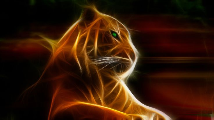Fractal Tiger Hd Desktop Background HD wallpapers