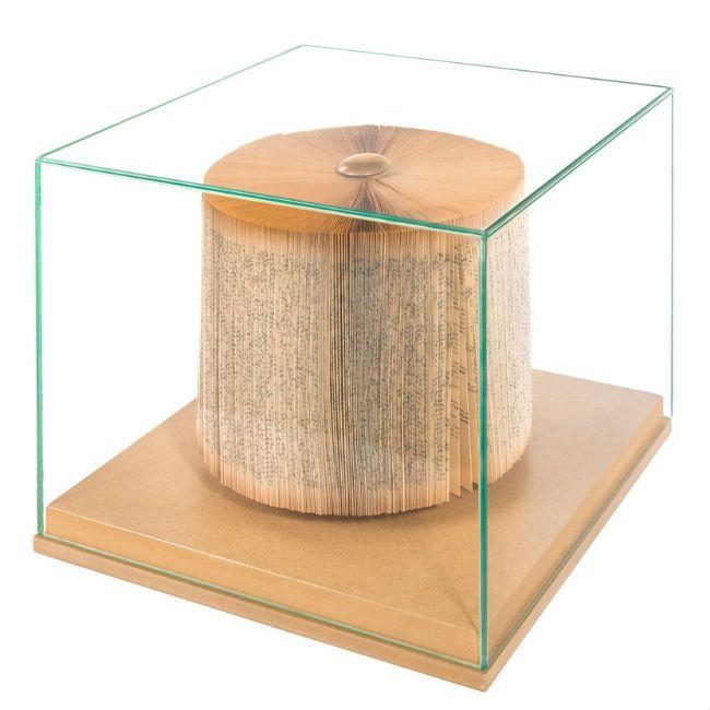 Via Garibaldi 12 - Vetrina on-line - The Wonder Room - Crizu - - libro scultura Trunk in teca vetro