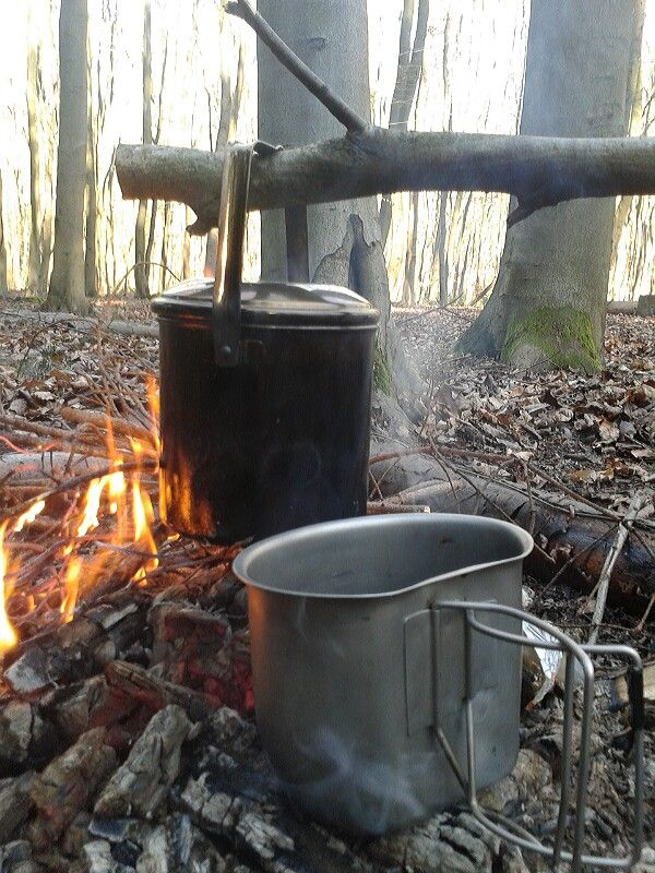 Coffee and lunch in the woods
