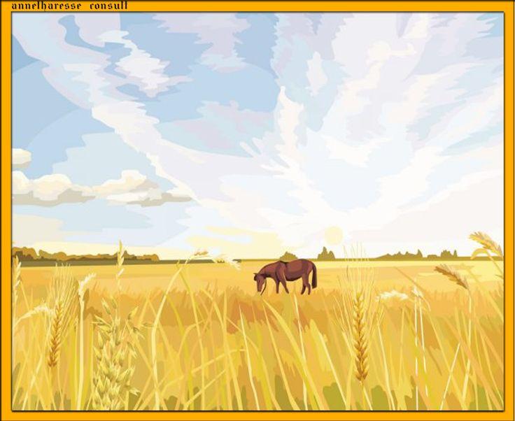 05. Viaţa la ţară
