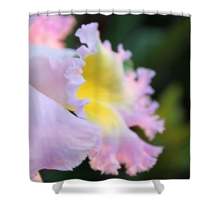 """Orchid"" Shower Curtain for sale by Erin McCandless"