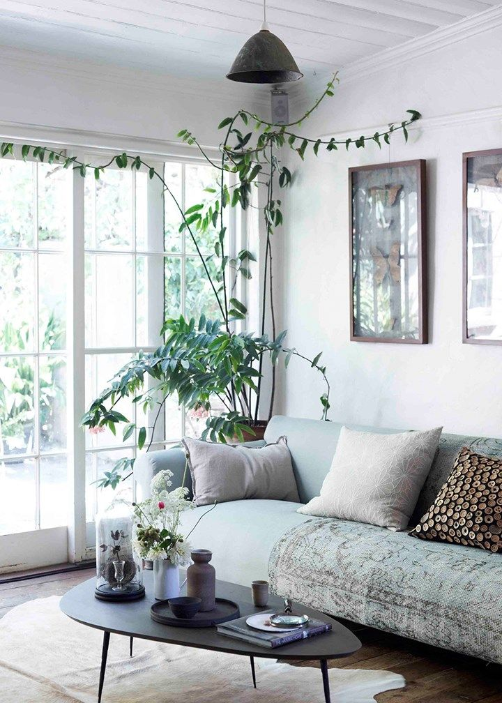 Green living | Home Beautiful Magazine Australia