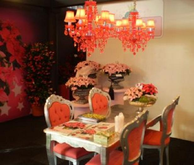 Moerheim New Plant bv heeft als doel nieuwe planten concepten op de Europese markt te introduceren. Op de vakbeurs in Duitsland ondersteunden zij hun nieuwste resultaat met roze meubelen van Francine.