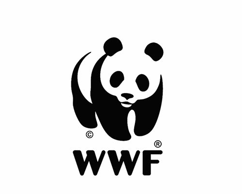 graphic designer morphs WWF panda icon into other endangered species