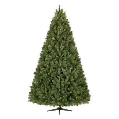 die besten 25 balsam fir christmas tree ideen auf pinterest eule weihnachtsbaum fraser tanne. Black Bedroom Furniture Sets. Home Design Ideas