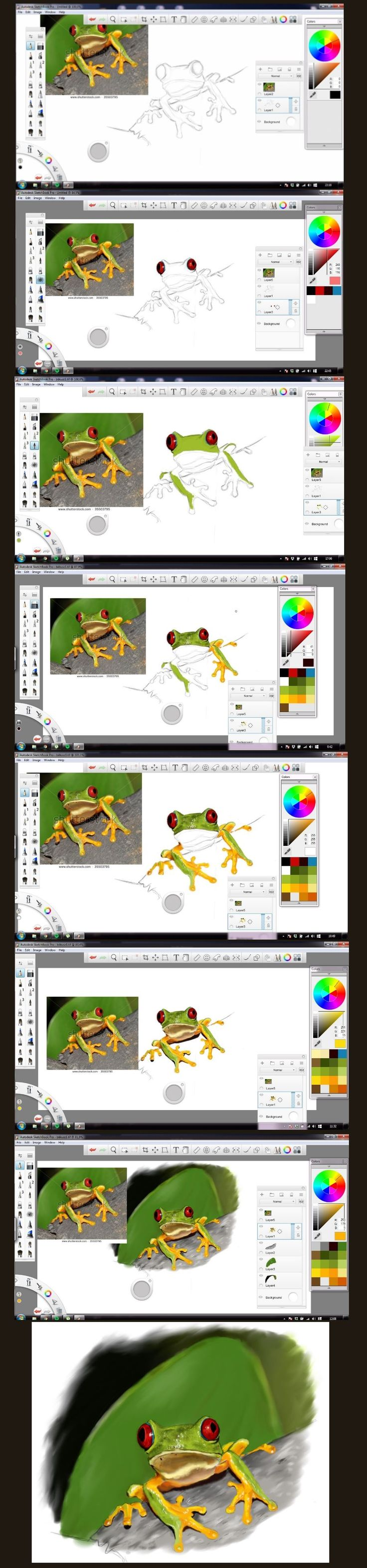 Step-by-step of drawing a tree frog from the Amazonas