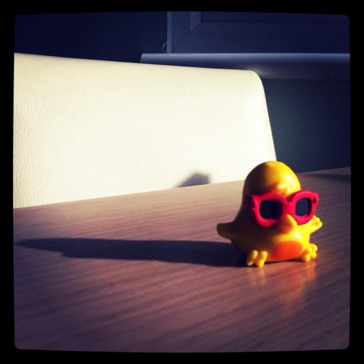 Little Duck Chilling In His Sunglasses Sunny Duck