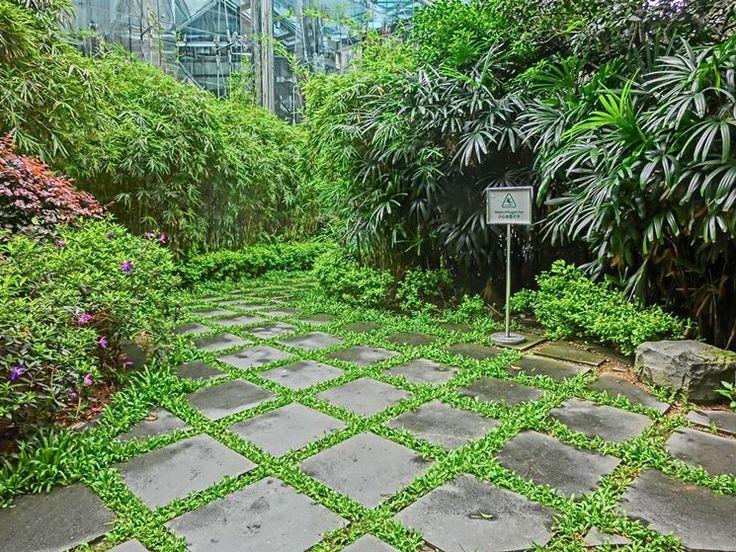 Oltre 25 fantastiche idee su pavimentazione da giardino su - Pavimentazione giardino in pietra ...