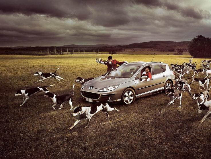 Partie de chasse avec la Peugeot 407 SW #407SW #misterauto #piecesauto