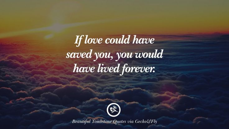 If love could have saved you, you would have lived forever.  12 Beautiful Tombstone Quotes For Your Beloved Cat or Dog