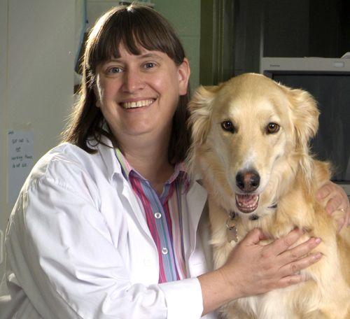 Canine lymphoma organization
