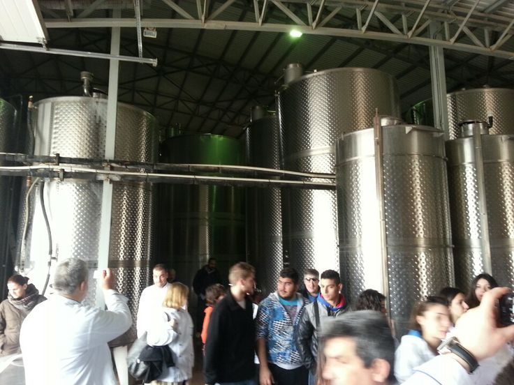Anagnostou Winery