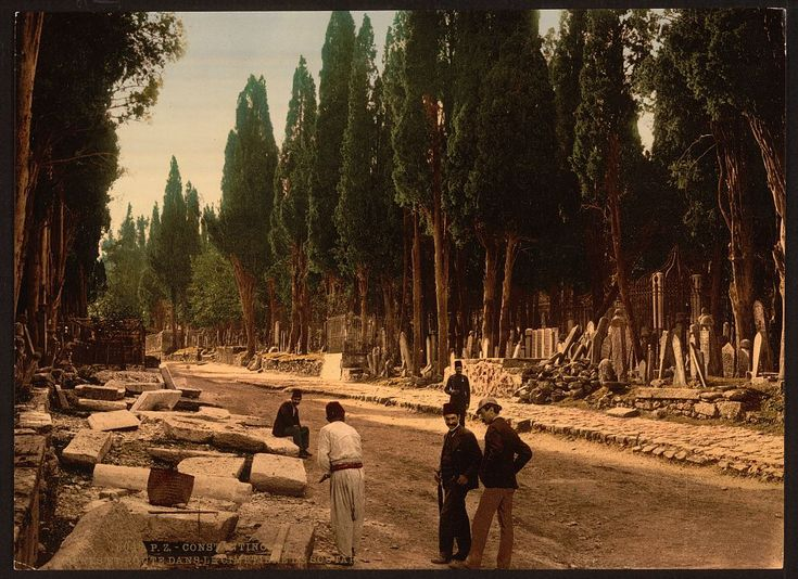 Cypresses and Road Leading to the Cemetery, Scutari, Constantinople, Turkey. Between 1890 and 1900.