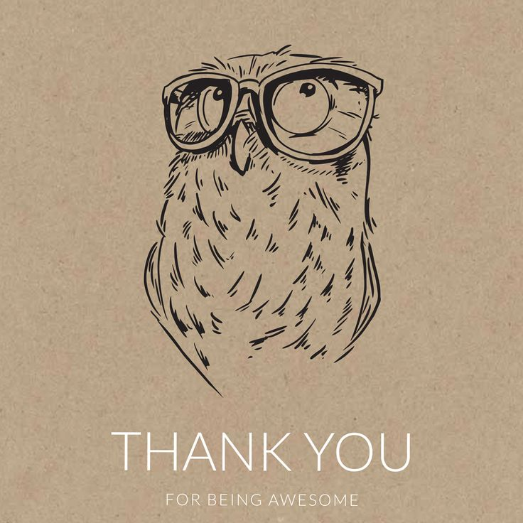 hadrien monloup on Behance - sketch - owl - thank you card