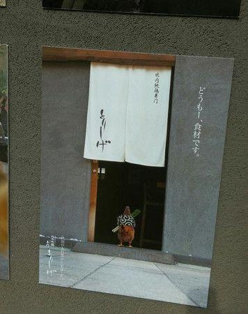 「我要去當烤雞串了」 日本餐廳超衝擊海報感動4萬人 | ETtoday寵物動物新聞 | ETtoday 新聞雲