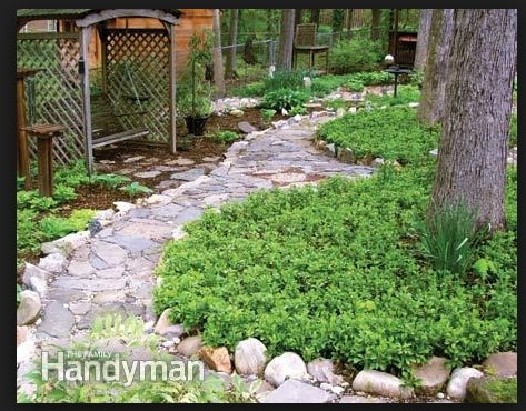 22 best landscape design images on Pinterest | Decks, Backyard patio Heavy Landscaping Ideas For Shaded Backyards on front yard landscaping ideas, shaded landscaping for property in northeast, cheap and easy landscaping ideas, inexpensive backyard ideas, patio landscaping ideas, shaded landscaping plants, shaded garden design, patio design ideas, small backyard ideas, storage shed landscaping ideas, hill landscaping ideas, shade landscaping ideas,