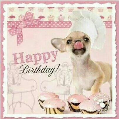 68 best images about Verjaardag – Chihuahua Birthday Cards
