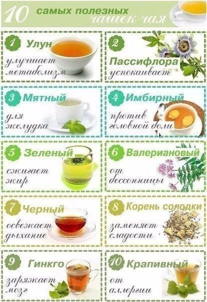 10 самых полезных чашек чая.  1. Улун (название, которое может быть на упаковке – Oolong). Чай улун улучшает метаболизм. Цветовая гамма заварки – от бледно-нефритового (как у зеленого чая) до темно-золотистого и темно-красного. Чем краснее чай, тем он больше помогает в похудении, за счет содержащихся в нем полифенолов. Четыре чашки улуна позволяют съесть 1 небольшой десерт без вреда для фигуры.  2. Пассифлора (название, которое может быть на упаковке – Passion flower). Этот напиток из…