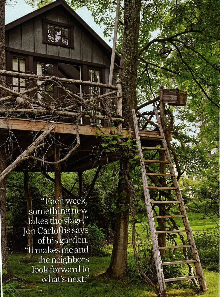 ...just over the river: Jon Carloftis:Country LivingCool Trees House, Treehouse Guestroom, Favorite Places, Outdoor Living, Carloftis Country Living, Jon Carloftis Country, Carlofti Country Living, Country Spaces, House Plans