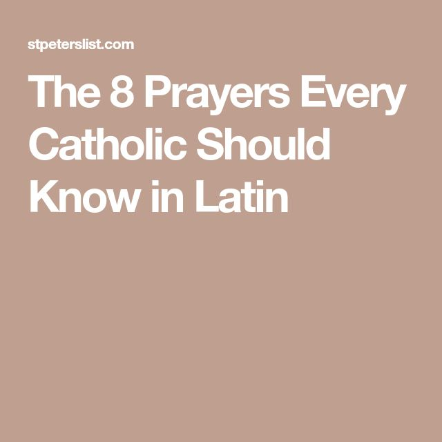 The 8 Prayers Every Catholic Should Know in Latin