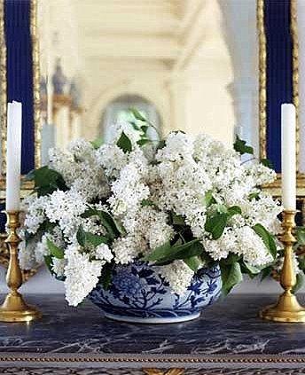Love this arrangement.