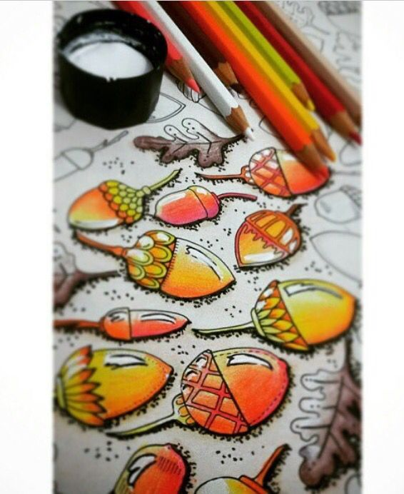 Art Elements Adult Coloring Books Color Boards Acorn Drawing Johanna Basford Book Doodle Fall Leaves Painting Techniques
