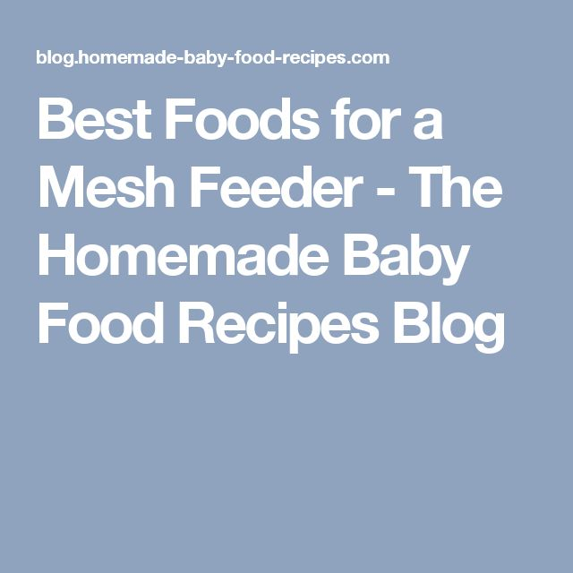 Best Foods for a Mesh Feeder - The Homemade Baby Food Recipes Blog