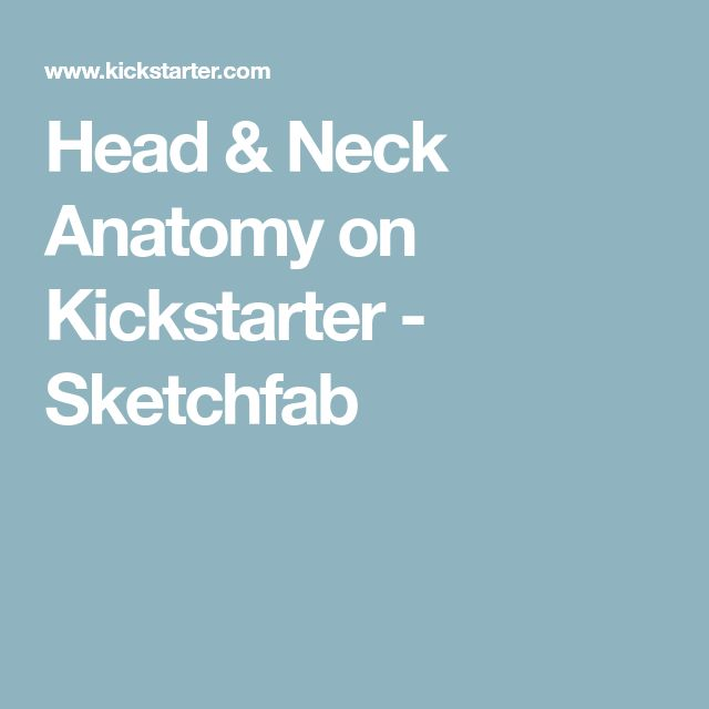 Head & Neck Anatomy on Kickstarter - Sketchfab