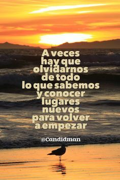 """""""A veces hay que olvidarnos de todo lo que sabemos y conocer lugares nuevos para volver a empezar"""". @candidman #Frases #Reflexion #AnoNuevo #AnoNuevo2017 #Candidman"""