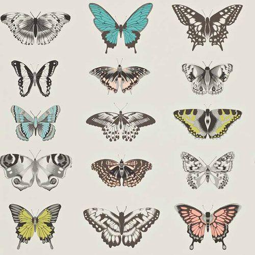 Härligt färgstark fjärilstapet från kollektionen Amazilia 111077. Klicka för att se fler inspirerande tapeter för ditt hem!