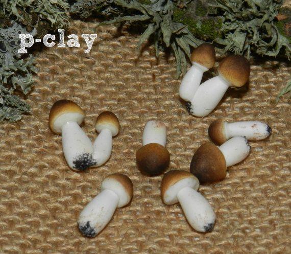 9 miniature mushrooms (Porcini / Boletus edulis), total 7 pieces handmade polymer clay (1:12) by Pclayplay. 9 Setas Miniatura (Boletus edulis), total 7 piezas realizadas en arcilla polimérica (1:12) por Pclayplay.