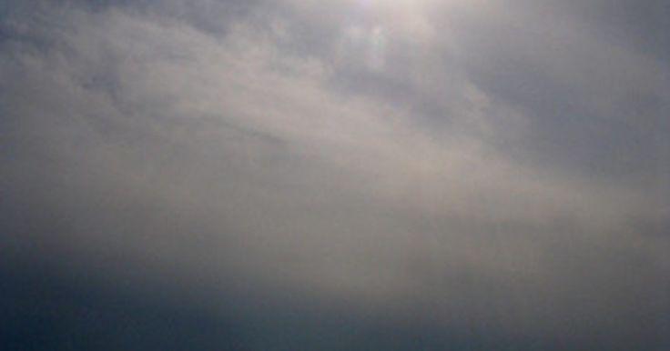 ¿Que animales viven en la zona batial?. La zona batial o batipelágica es el área del océano entre los 3.300 y 13.000 pies (1000 a 3962 metros) de profundidad. Por encima de él se encuentra la zona mesopelágica, mientras que por debajo se encuentra la zona abisal o abisopelágica. La zona batial está en oscuridad permanente, con sólo una pequeña cantidad de luz solar en el extremo azul ...