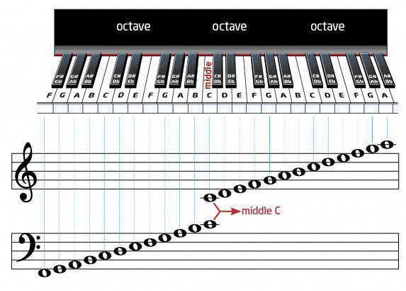 Learn How To Play The Piano Ensino De Piano Musicas De Piano