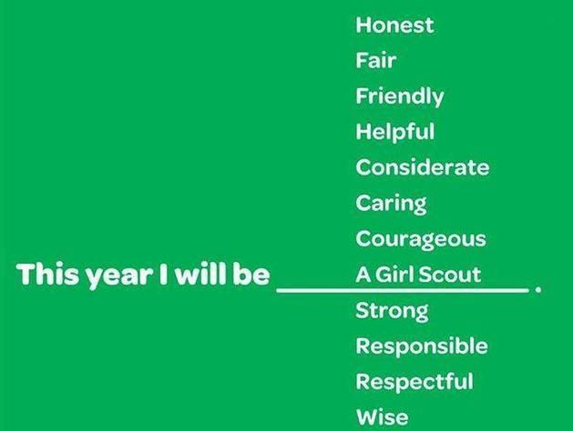 78 best images about girl scout inspiration on pinterest