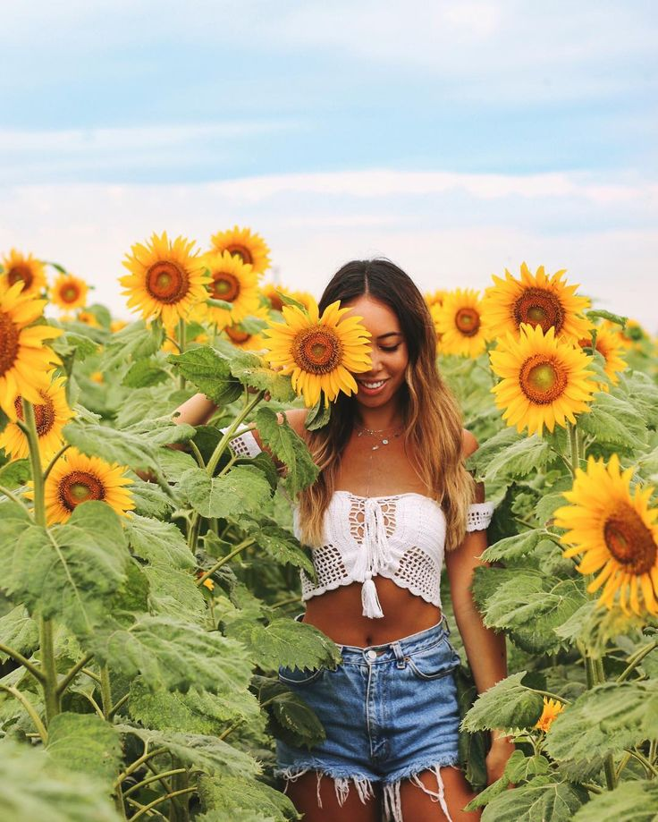 Sunflower field!