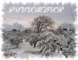 oneiroxwra: Διαθεματικές Δραστηριότητες (Καθημερινά Προγράμματα) Δεκέμβριος - Ιανουάριος - Φεβρουάριος