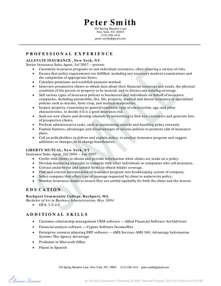 27 best Resume Templates images on Pinterest Resume ideas - resume examples for sales