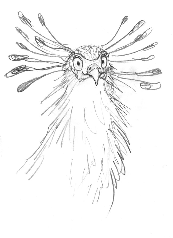 Pencil sketch with eyelashes. character sketch #leonarddoesntdance #bird #franceswatts #picturebook #secretarybird