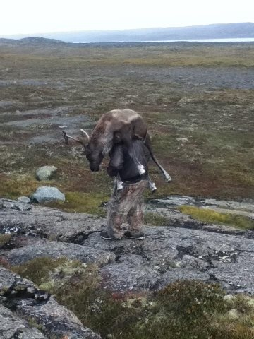 nunavut caribou hunting outfitters