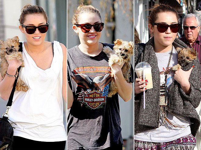 Miley Cyrus in Grey Ant #sunglasses