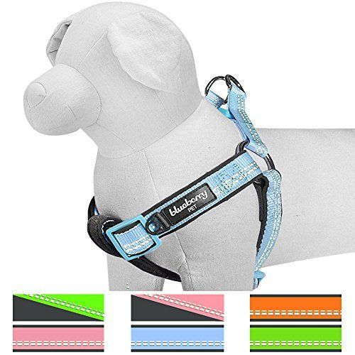 """Blueberry Pet 4 Colors Soft & Comfy New 3M Reflective Step-in Pastel Color Padded Dog Harness Chest Girth 15.5"""" - 19.5"""" Baby Blue Small No Pull Adjustable Harnesses for Dogs"""