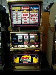 free online slot machines wolf run free sizzling hot spielen