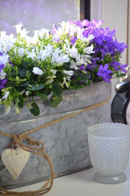 felix-traumland: Kaffeeklatsch bei Regina # 42