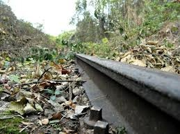 Lungo uno dei lati dello stesso campo era stato ammonticchiato del terreno a segnare il confine con i binari della ferrovia. Codamozza | Sergio Saggese